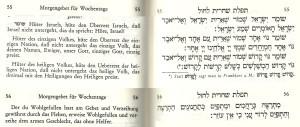 Tachanun - Shomer Yisrael